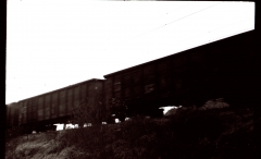 »Dark Skies« - Camera: Zorki 1. Location: Styria, Austria.