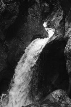 Dense Woods, Wild Canyons | Bärenschützklamm. Camera: Nikon F100, Film: Ilford FP4+. Location: Bärenschützklamm, Styria/Austria.