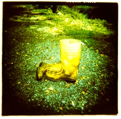 looking at things | abandoned. Camera: Holga 120. Film: Kodak E100VS. Cross Processed.