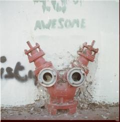 looking at things | abandoned. kamera: kiev 88. film: kodak ektar 100. location: tel aviv/florentin., israel.