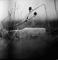 looking at things | abandoned. Camera: Kiev 88. Film: Ilford Pan 100.